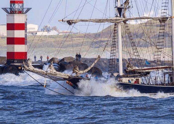 Thalassa school at sea