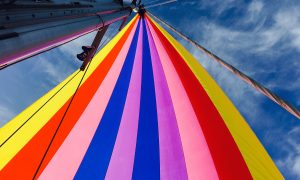 Fotowedstrijd juryrapport oktober kleur